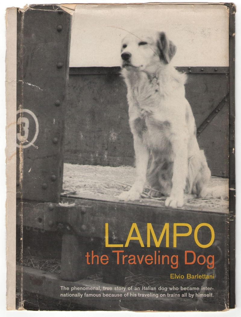 Lampo -- front cover of 1963 English translation by Alan Houghton Broderick. Pantheon/Random House.