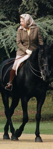 Photo: Public Domain. I redacted Ronald Reagan from this photo because I am not aware that he had any connection with swans. The Queen is riding her mare Burmese, who lived to be 28. http://www.reagan.utexas.edu/archives/photographs/large/c8454-18.jpg